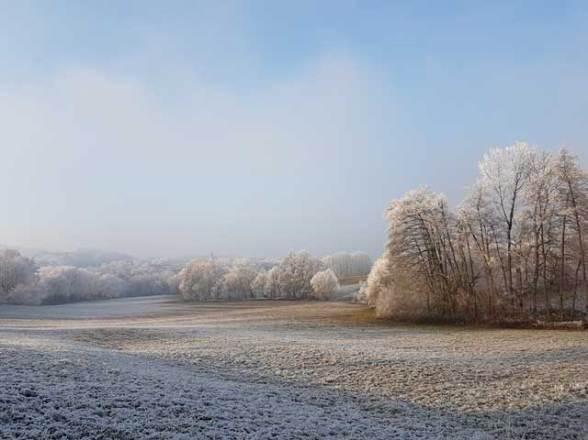 Neujahrsspaziergang 2017 in Offenburg Zunsweier